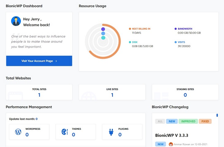 BionicWP dashboard